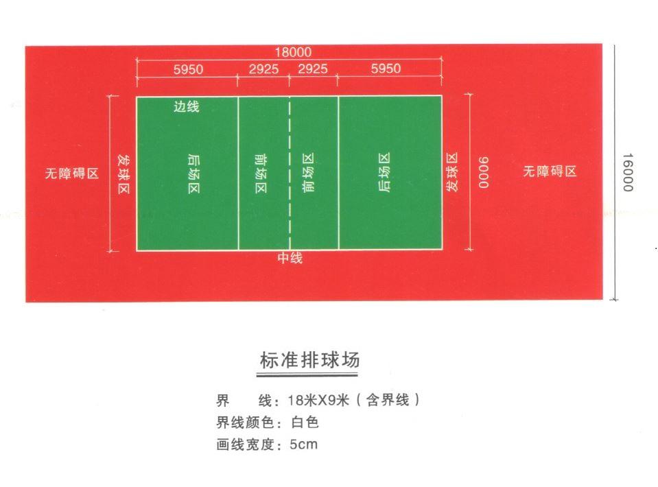 标准排球场.JPG